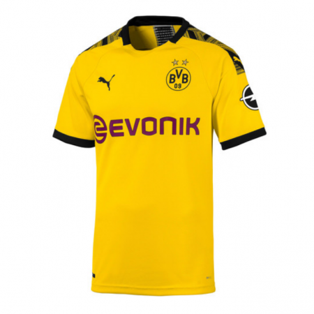 Borussia Dortmund Shirt Thuis Senior 2019-2020 Authentic
